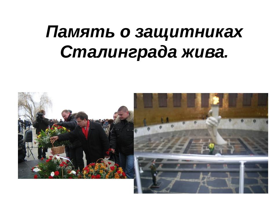 Память о защитниках Сталинграда жива.