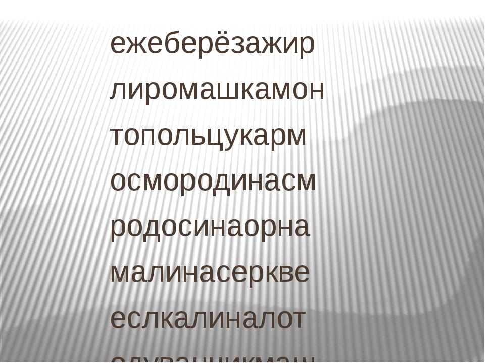 ежеберёзажир лиромашкамон топольцукарм осмородинасм родосинаорна малинасеркве...