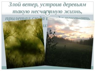 Злой ветер, устроив деревьям такую несчастную жизнь, прилетал сюда иногда пок