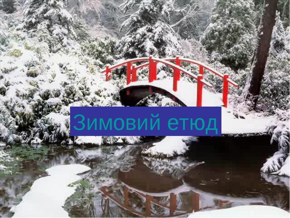 Зимовий етюд