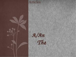 A/An The Articles