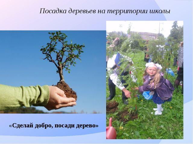 Посадка деревьев на территории школы «Сделай добро, посади дерево»