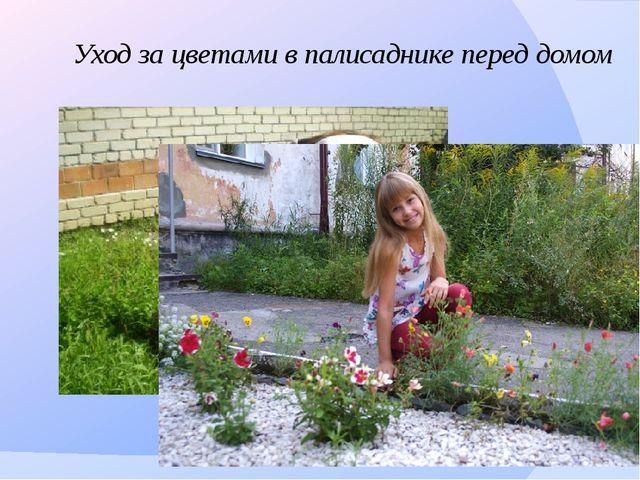 Уход за цветами в палисаднике перед домом