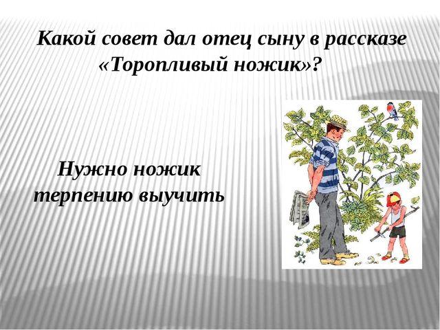 Какой совет дал отец сыну в рассказе «Торопливый ножик»? Нужно ножик терпению...