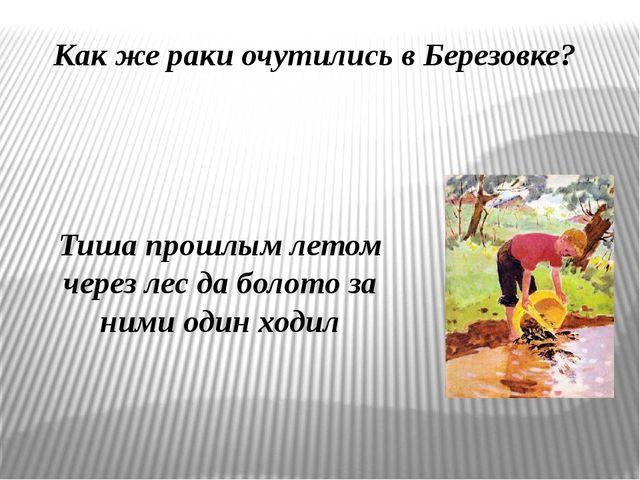Как же раки очутились в Березовке? Тиша прошлым летом через лес да болото за...