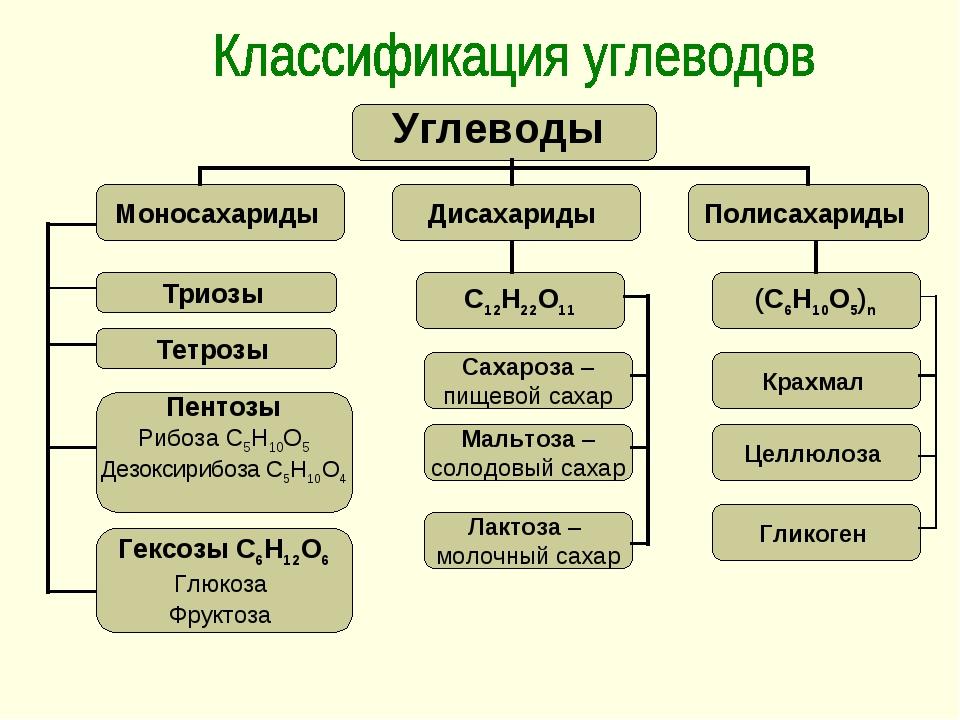 Триозы Тетрозы Пентозы Рибоза С5Н10О5 Дезоксирибоза С5Н10О4 Гексозы С6Н12О6 Г...