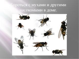 Бороться с мухами и другими насекомыми в доме.