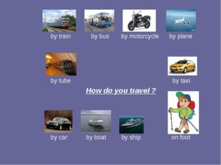 by train by bus by motorcycle by plane by tube by taxi How do you travel ? b