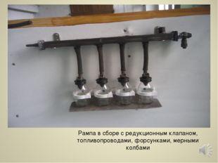 Рампа в сборе с редукционным клапаном, топливопроводами, форсунками, мерными