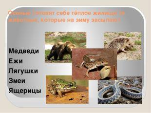 Осенью готовят себе тёплое жилище те животные, которые на зиму засыпают Медве