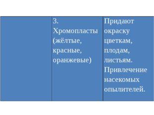 3. Хромопласты (жёлтые, красные, оранжевые) Придают окраску цветкам, плодам,