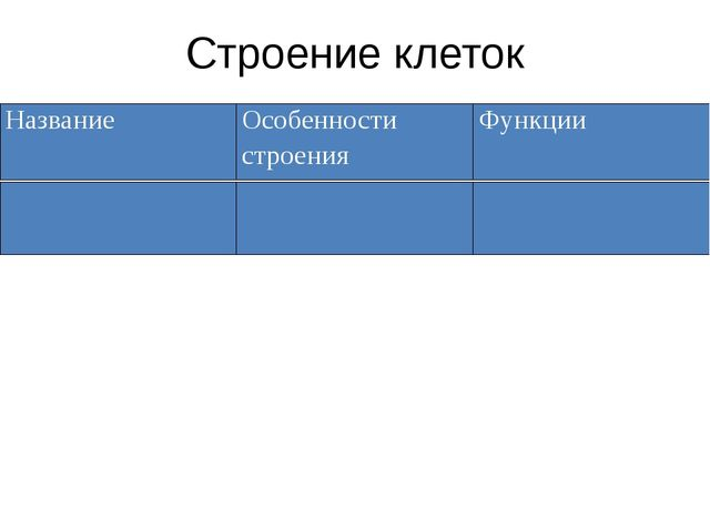 Строение клеток Название Особенности строения Функции