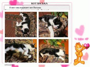 А вот так отдыхает кот Васька. Я говорю ему: «Сладких снов тебе, Васька!» К