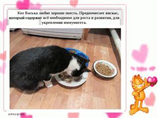 Кот Васька любит хорошо поесть. Предпочитает вискас, который содержит всё н