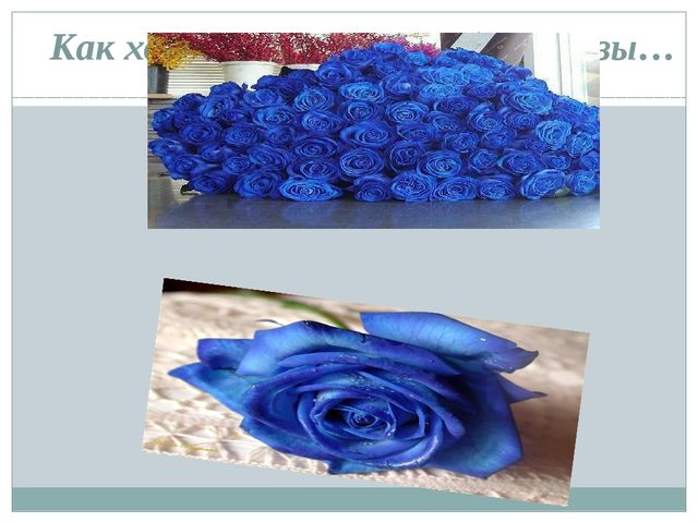 Как хороши, как свежи были розы…