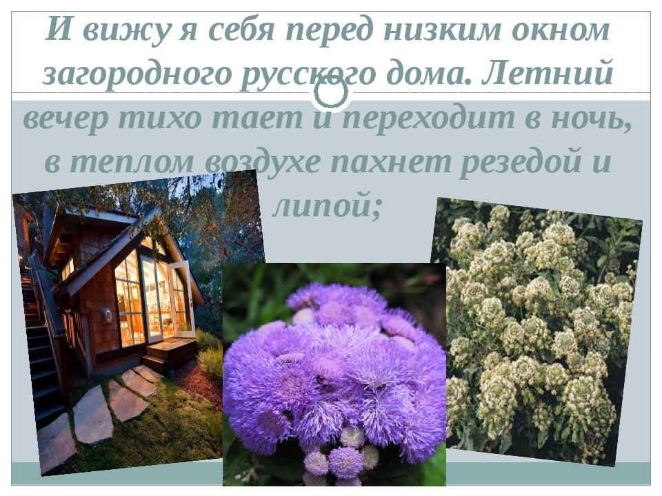 И вижу я себя перед низким окном загородного русского дома. Летний вечер тихо...