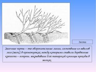 Засечные черты – это оборонительные линии, состоявшие из завалов леса (засек)