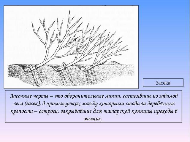 Засечные черты – это оборонительные линии, состоявшие из завалов леса (засек)...