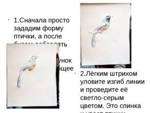 1.Сначала просто зададим форму птички, а после будем добавлять детали и насы