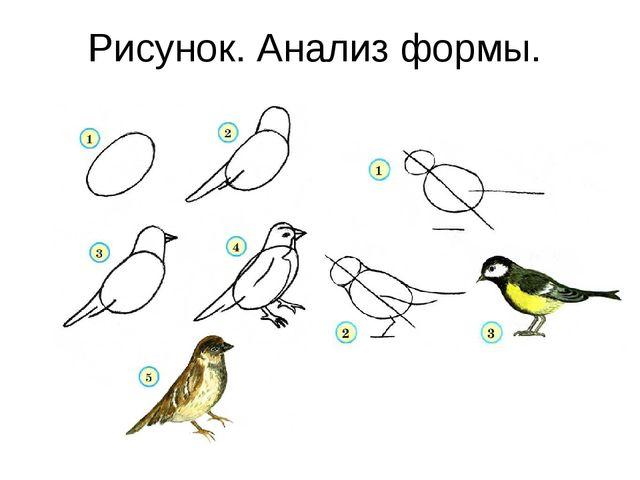 Рисунок. Анализ формы.