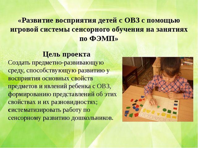 «Развитие восприятия детей с ОВЗ с помощью игровой системы сенсорного обучени...