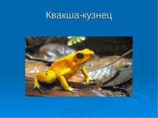 Квакша-кузнец