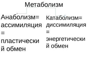 Метаболизм Анаболизм= ассимиляция= пластический обмен Катаболизм= диссимиляци