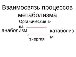 Взаимосвязь процессов метаболизма анаболизм катаболизм Органические в-ва энер