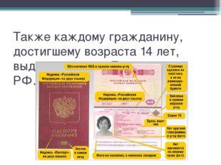 Также каждому гражданину, достигшему возраста 14 лет, выдают паспорт Граждани