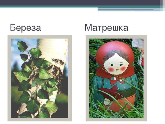Береза Матрешка