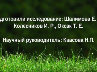 Подготовили исследование: Шалимова Е. А., Колесников И. Р., Оксак Т. Е. Научн