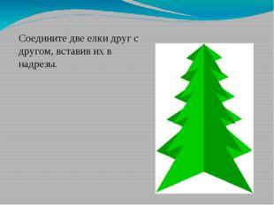 Соедините две елки друг с другом, вставив их в надрезы.