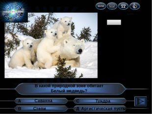 1 2 3 4 5 6 7 8 9 10 В какой природной зоне обитает Белый медведь? А В Д С Ту