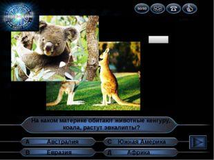 1 2 3 4 5 6 7 8 9 10 На каком материке обитают животные кенгуру, коала, расту