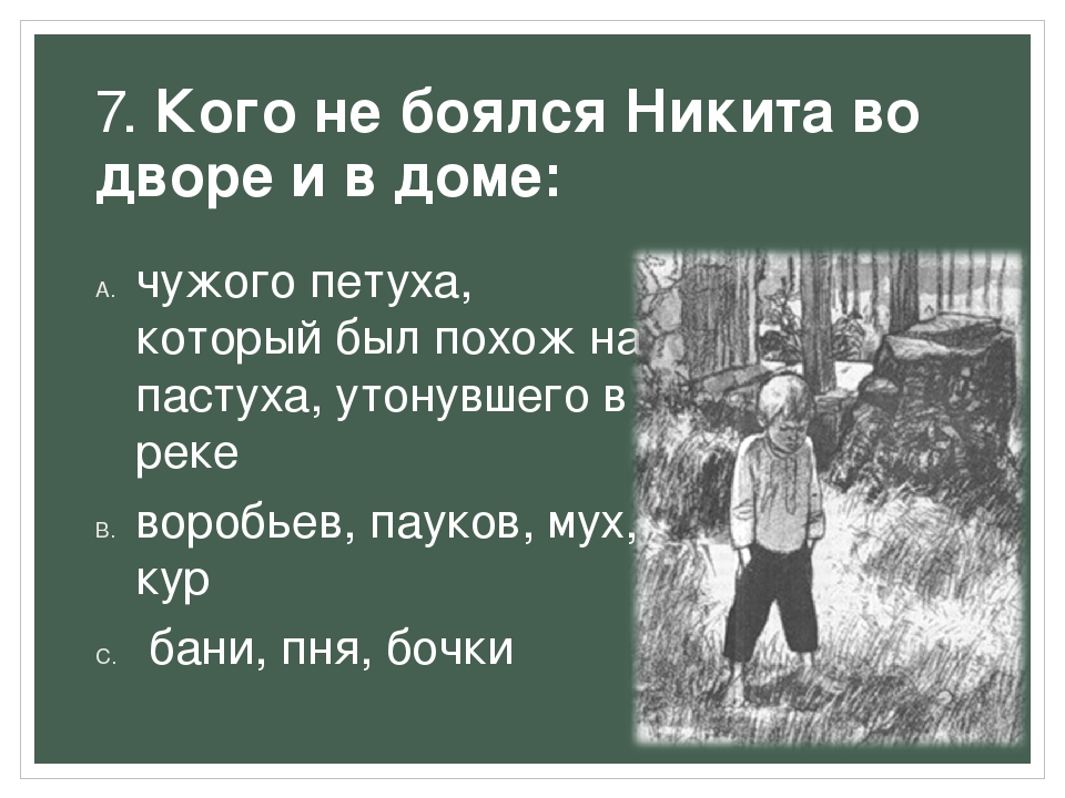 7. Кого не боялся Никита во дворе и в доме: чужого петуха, который был похож...