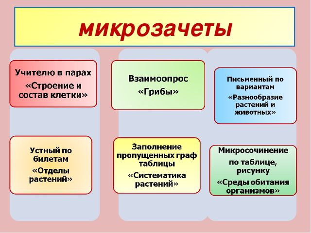 микрозачеты