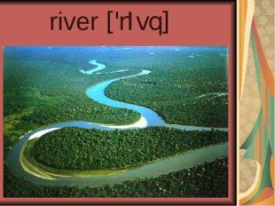 river ['rIvq]