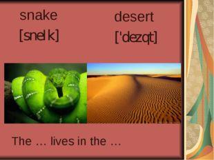 snake [sneIk] desert ['dezqt] The … lives in the …