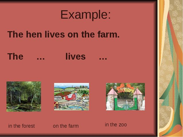 Example: The hen lives on the farm. The … lives … in the forest on the farm i...