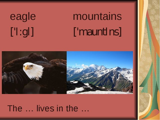 eagle ['I:gl] mountains ['mauntIns] The … lives in the …