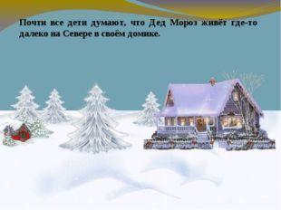 Почти все дети думают, что Дед Мороз живёт где-то далеко на Севере в своём д
