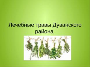 Лечебные травы Дуванского района
