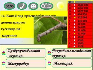 1 Покровительственная окраска Маскировка Мимикрия Предупреждающая окраска 1