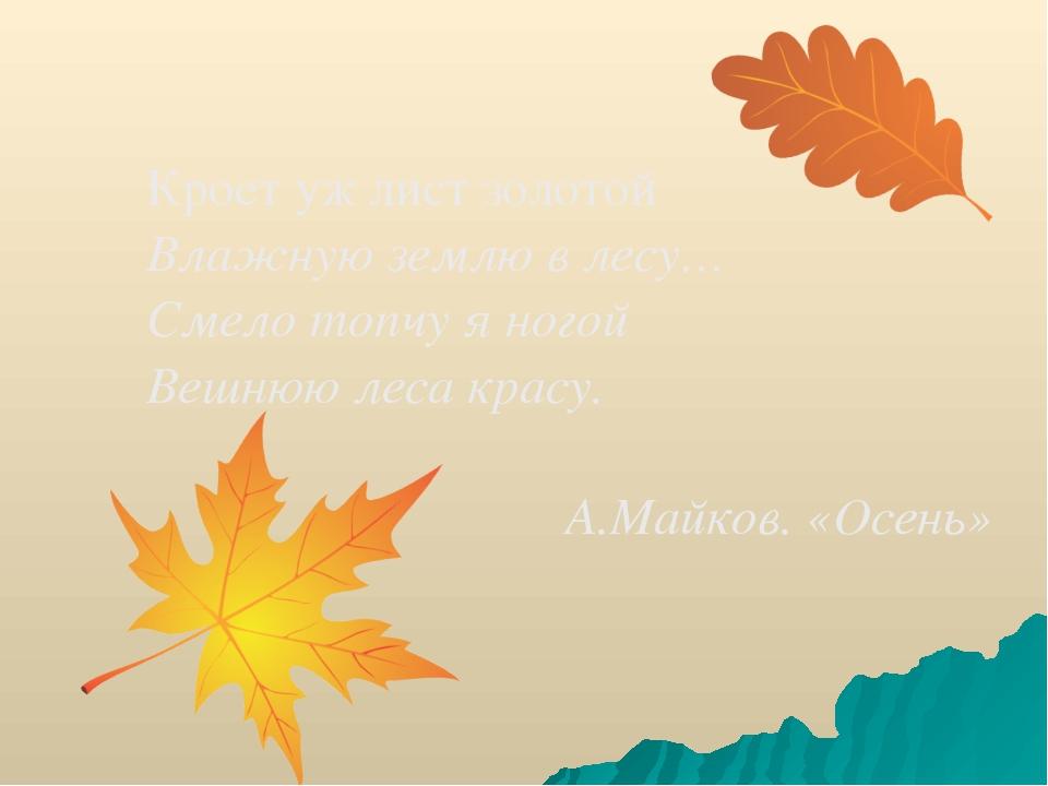 Кроет уж лист золотой Влажную землю в лесу… Смело топчу я ногой Вешнюю леса к...