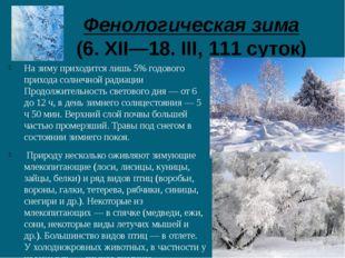 Фенологическая зима (6. XII—18. III, 111 суток) На зиму приходится лишь 5% г