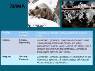 ЗИМА Декабрь Стужень, Студень Морозы и стужа. Самый холодный месяц в году. Ян