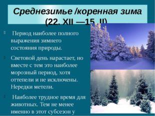 Среднезимье/коренная зима (22. XII —15. II) Период наиболее полного выражени
