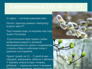 Снеготаяние(19. III—15. IV) 21 марта — весеннее равноденствие. Начало перехо
