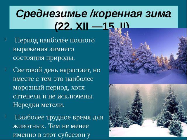 Среднезимье/коренная зима (22. XII —15. II) Период наиболее полного выражени...