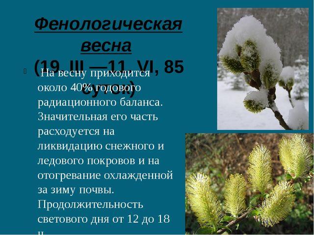 Фенологическая весна (19. III —11. VI, 85 суток) На весну приходится около 4...
